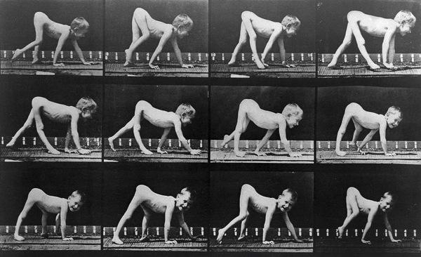 Muybridge539.jpg