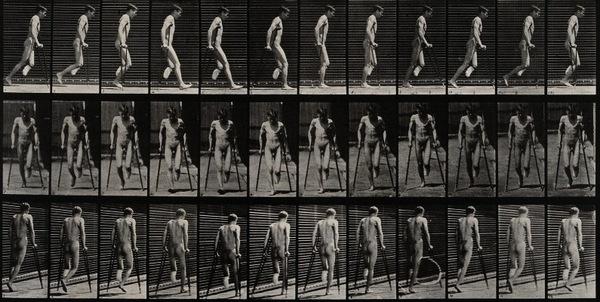 Muybridge537.jpg
